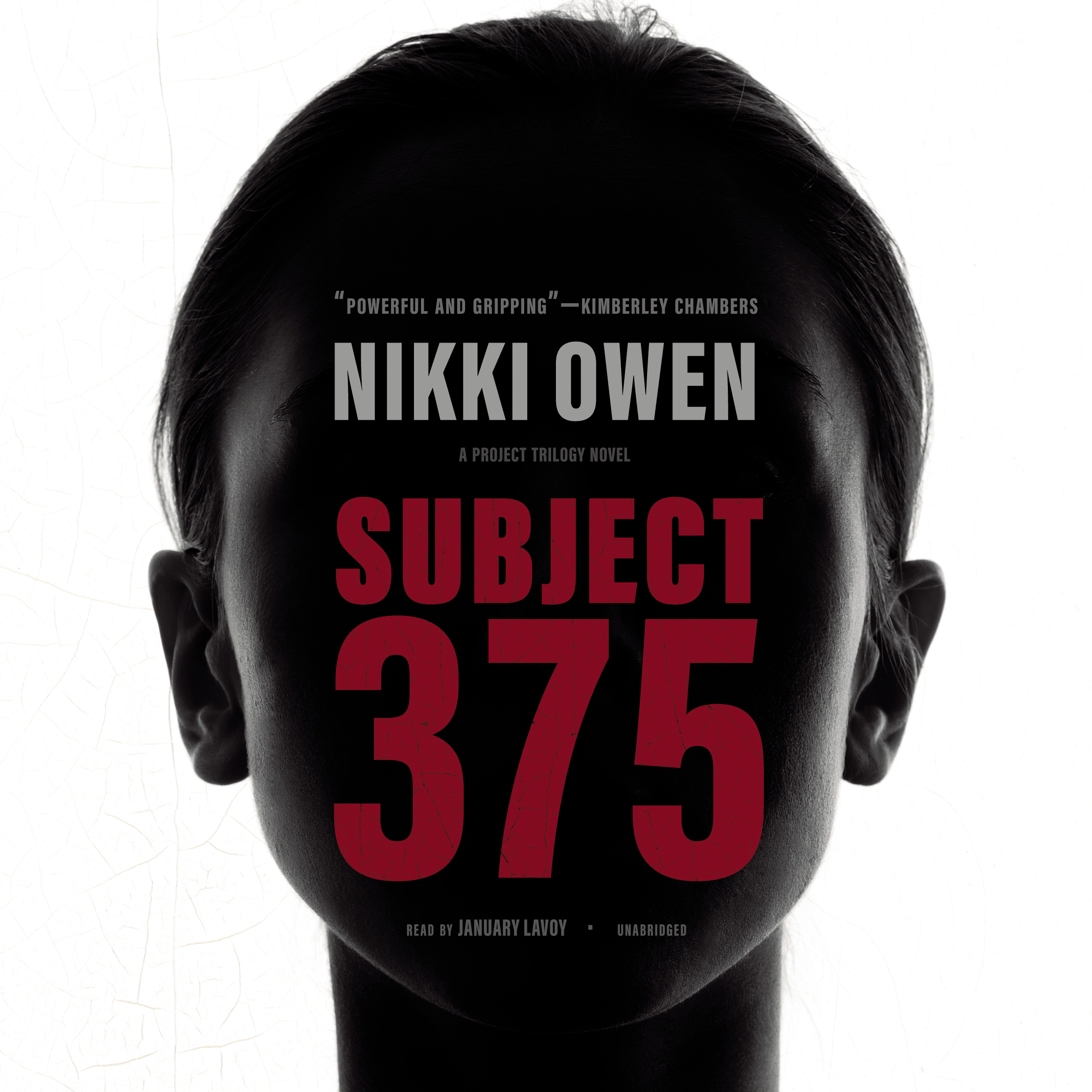 Printable Subject 375 Audiobook Cover Art