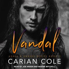 Vandal Audiobook, by Carian Cole