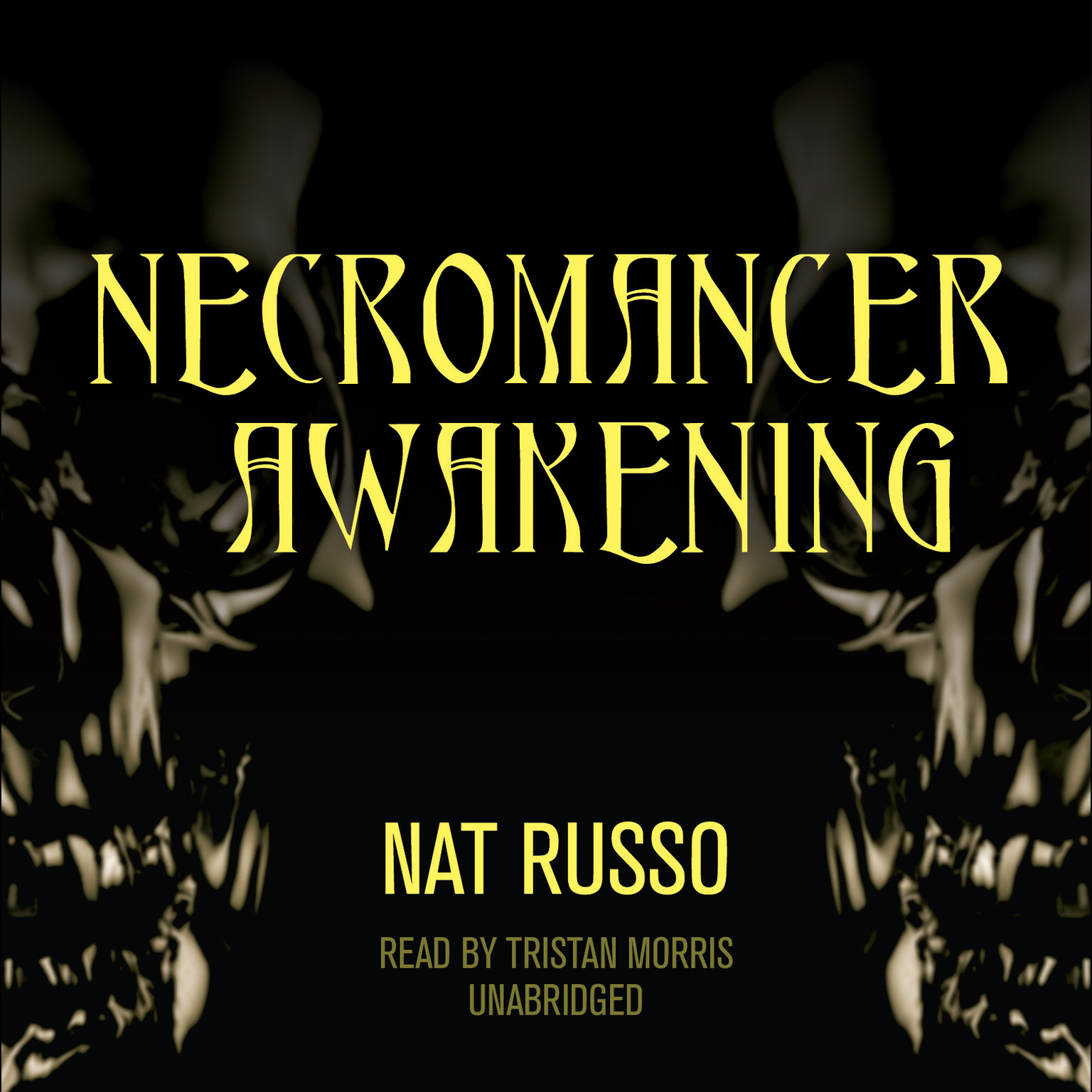 Printable Necromancer Awakening: Book One of the Mukhtaar Chronicles Audiobook Cover Art