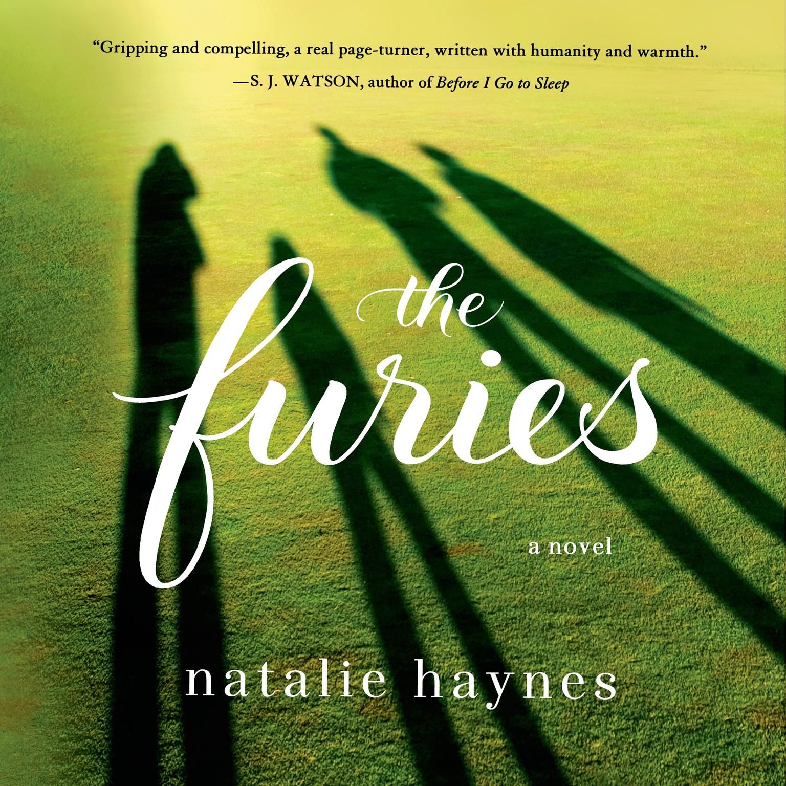 Printable The Furies: A Novel Audiobook Cover Art