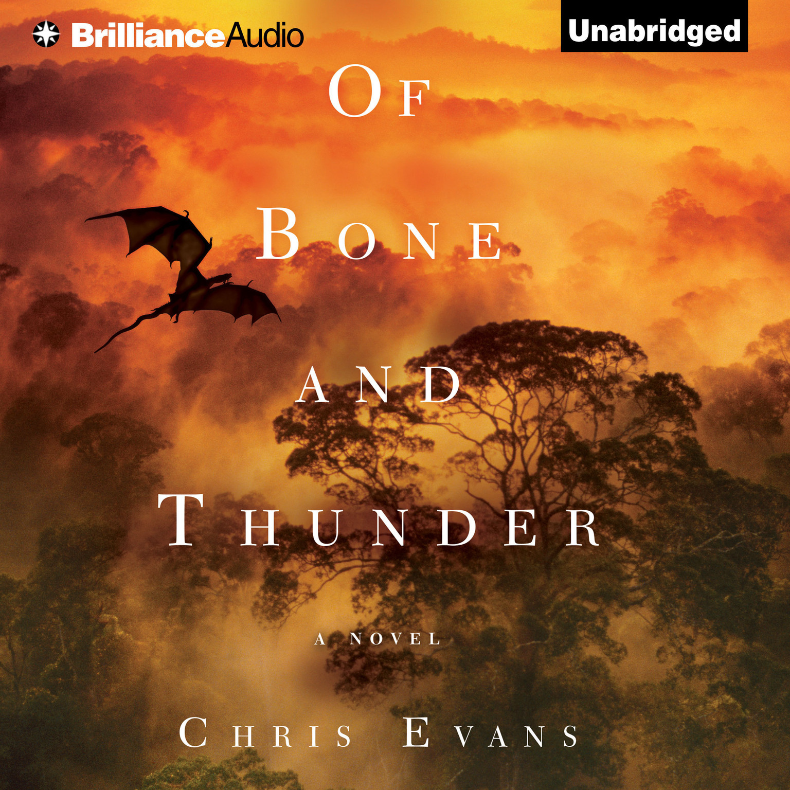 Printable Of Bone and Thunder: A Novel Audiobook Cover Art