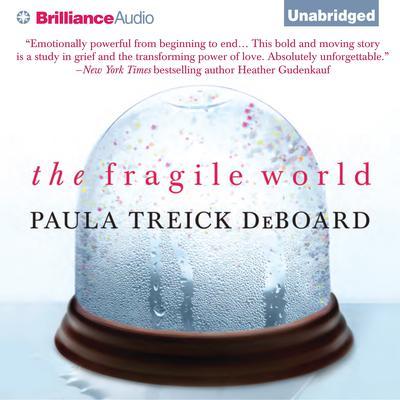 The Fragile World: A Novel Audiobook, by Paula Treick DeBoard