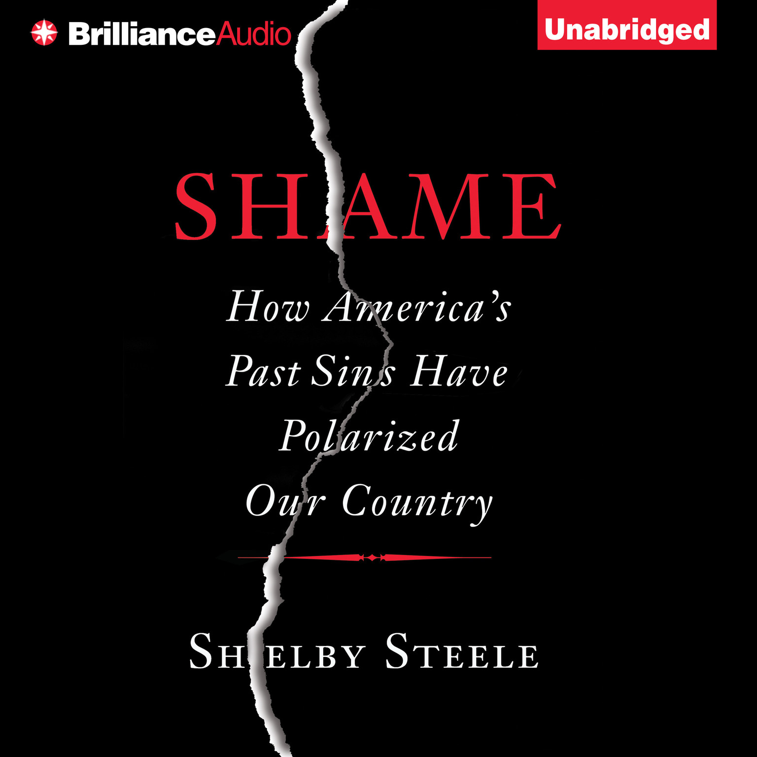 Printable Shame: How America's Past Sins Have Polarized Our Country Audiobook Cover Art