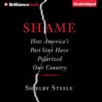 Shame: How Americas Past Sins Have Polarized Our Country Audiobook, by Shelby Steele
