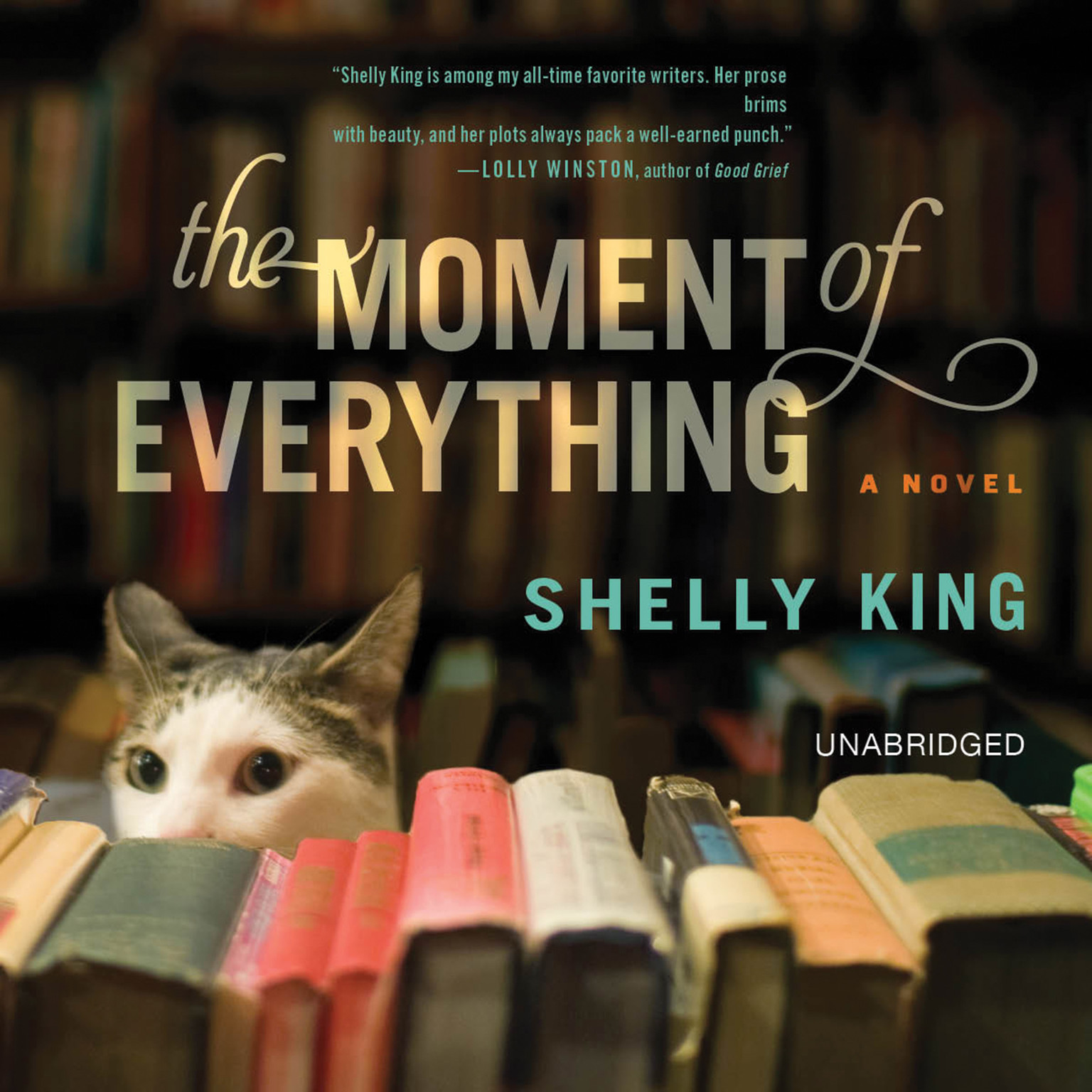 Printable The Moment of Everything: A Novel Audiobook Cover Art