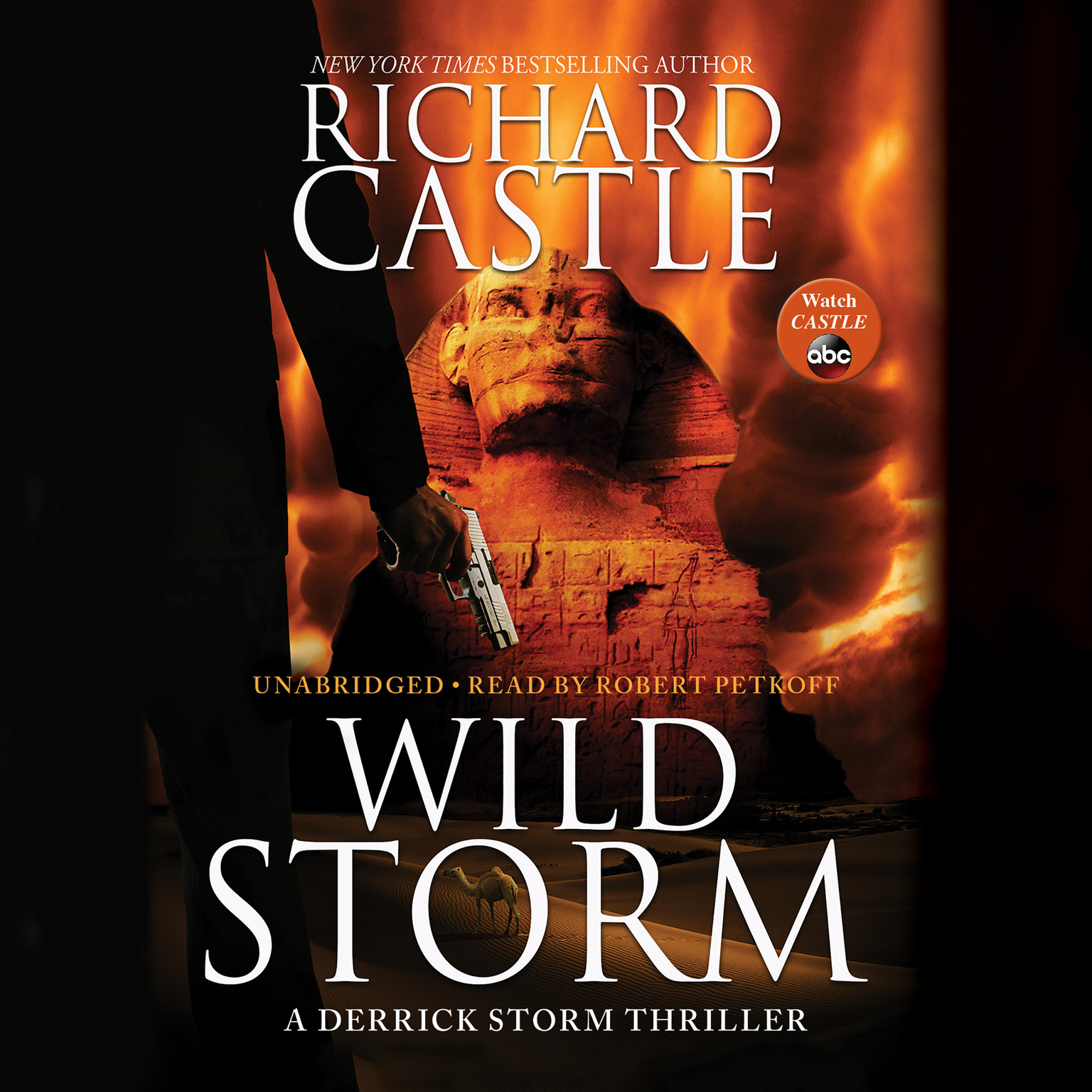 Printable Wild Storm: A Derrick Storm Thriller Audiobook Cover Art