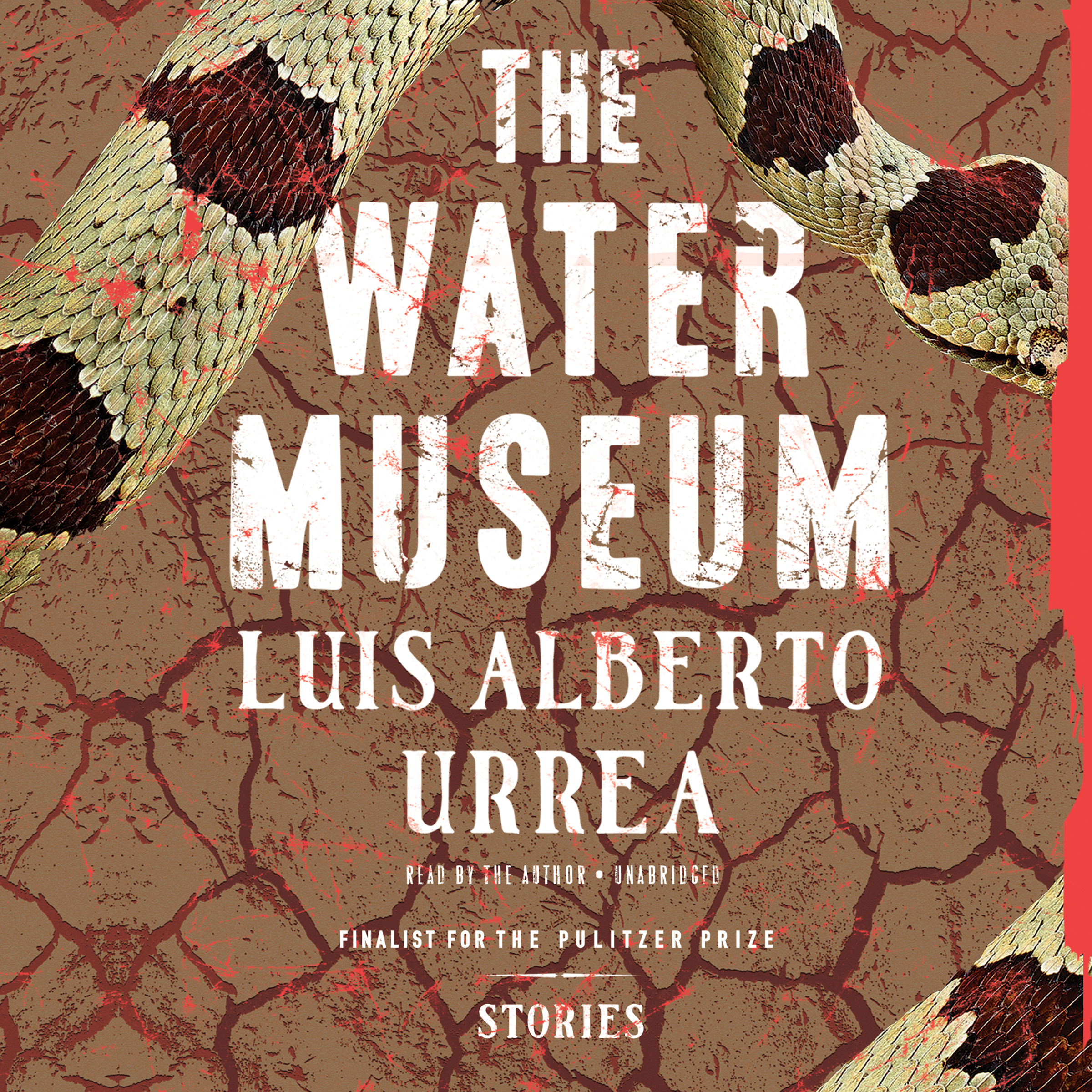 Printable The Water Museum: Stories Audiobook Cover Art