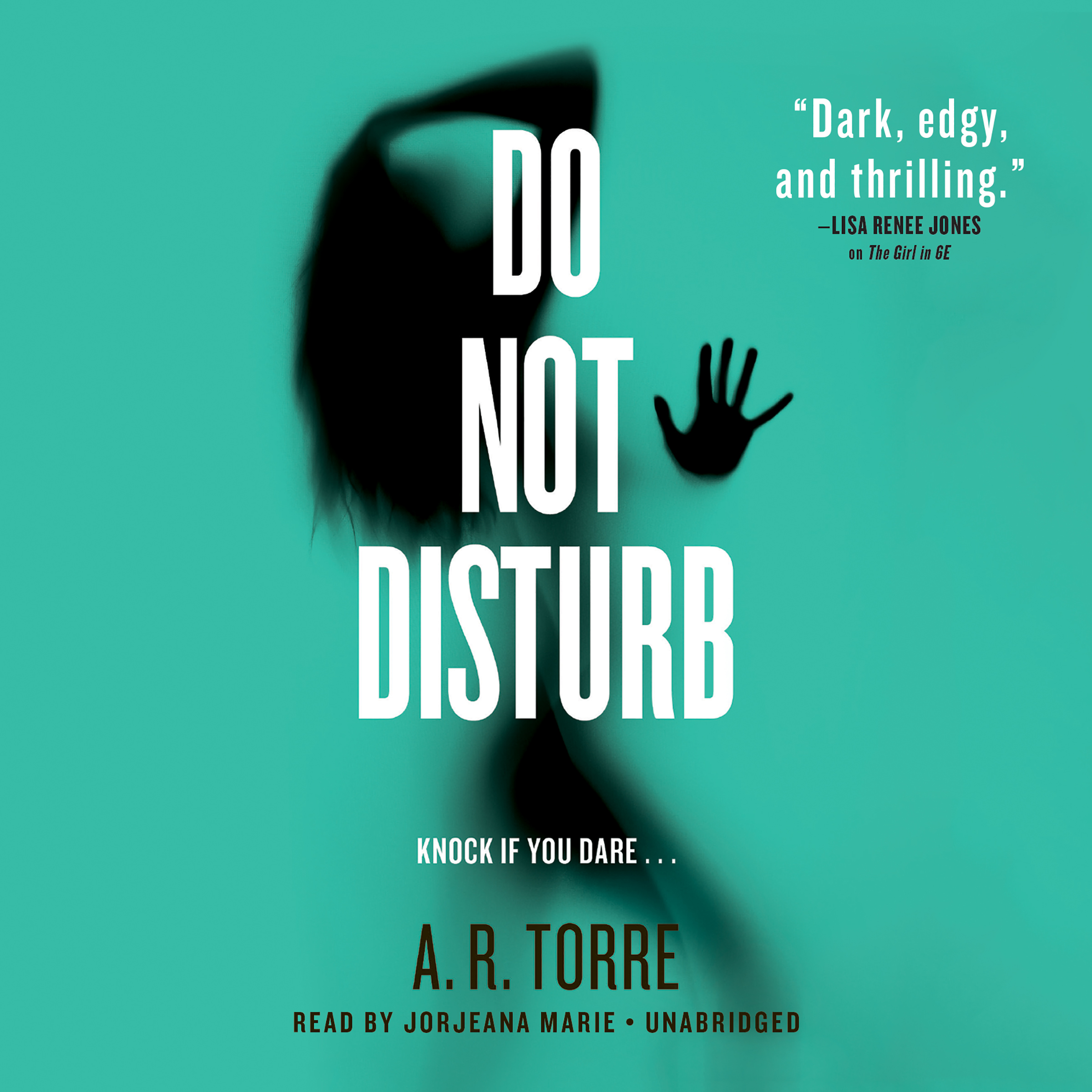 Printable Do Not Disturb Audiobook Cover Art