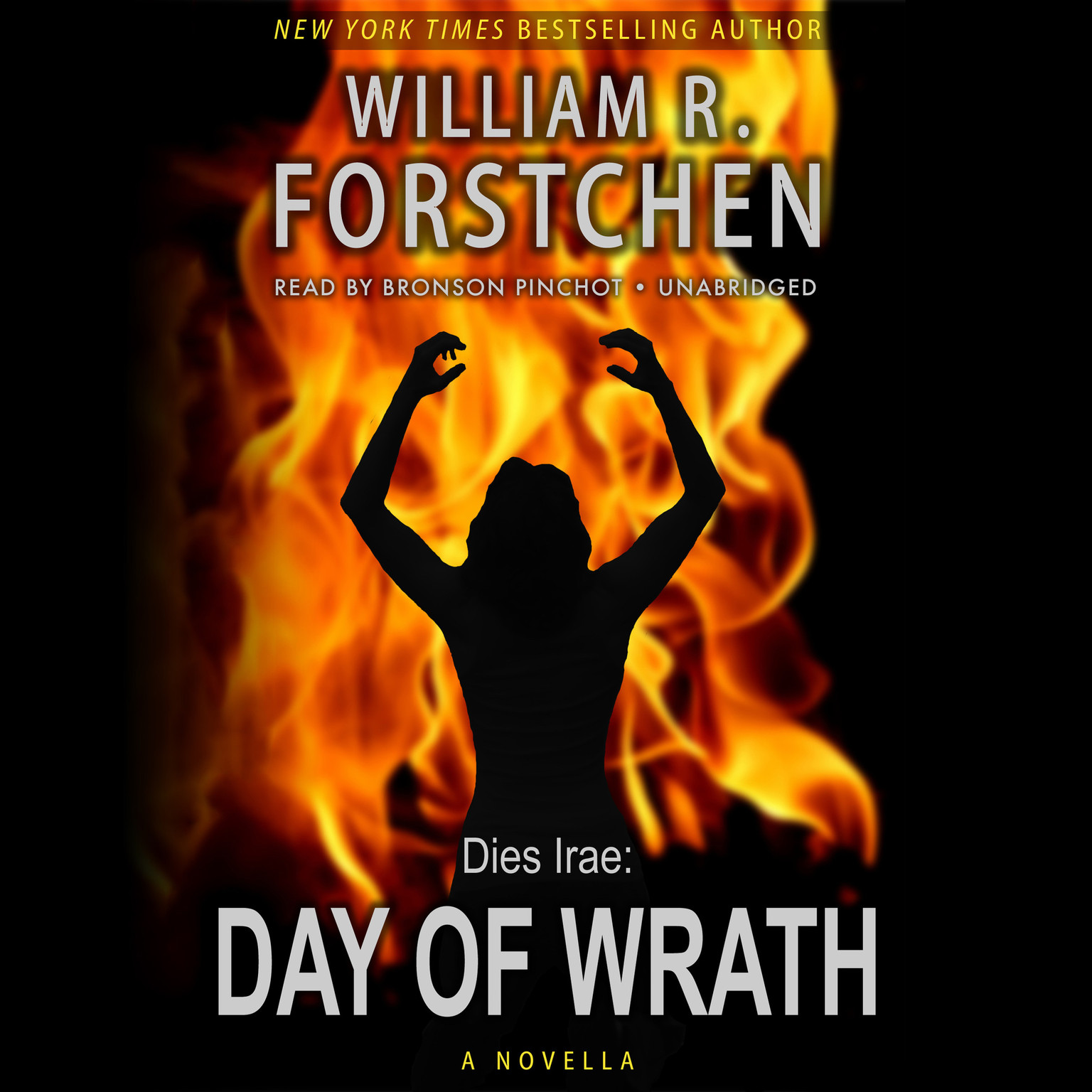 Printable Day of Wrath Audiobook Cover Art