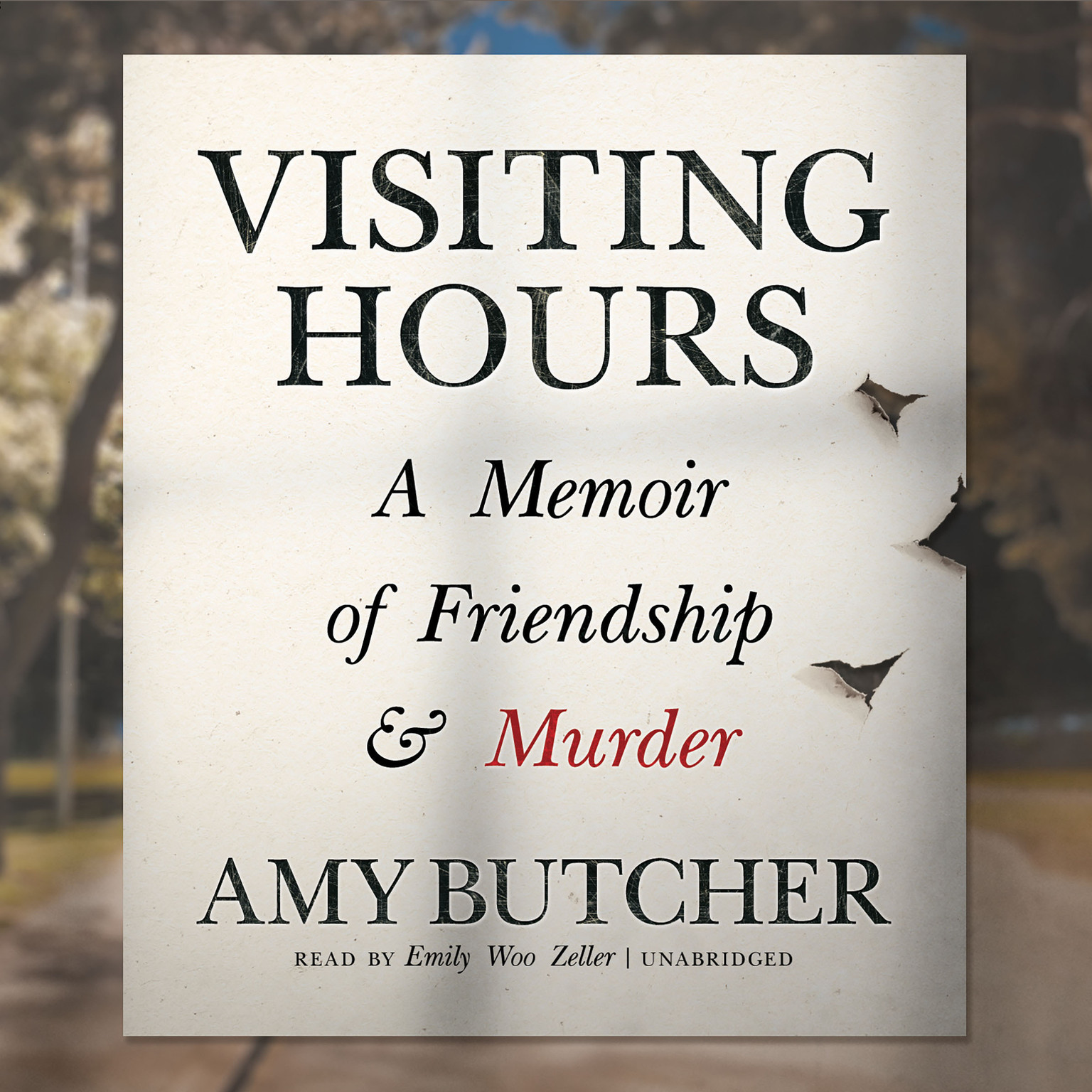Printable Visiting Hours: A Memoir of Friendship and Murder Audiobook Cover Art