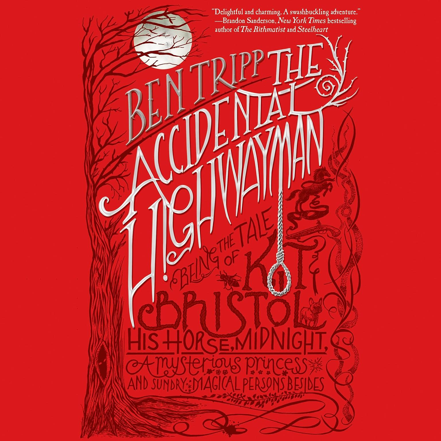 Printable The Accidental Highwayman: Being the Tale of Kit Bristol, His Horse Midnight, a Mysterious Princess, and Sundry Magical Persons Besides Audiobook Cover Art