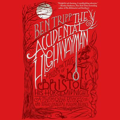 The Accidental Highwayman: Being the Tale of Kit Bristol, His Horse Midnight, a Mysterious Princess, and Sundry Magical Persons Besides Audiobook, by Ben Tripp