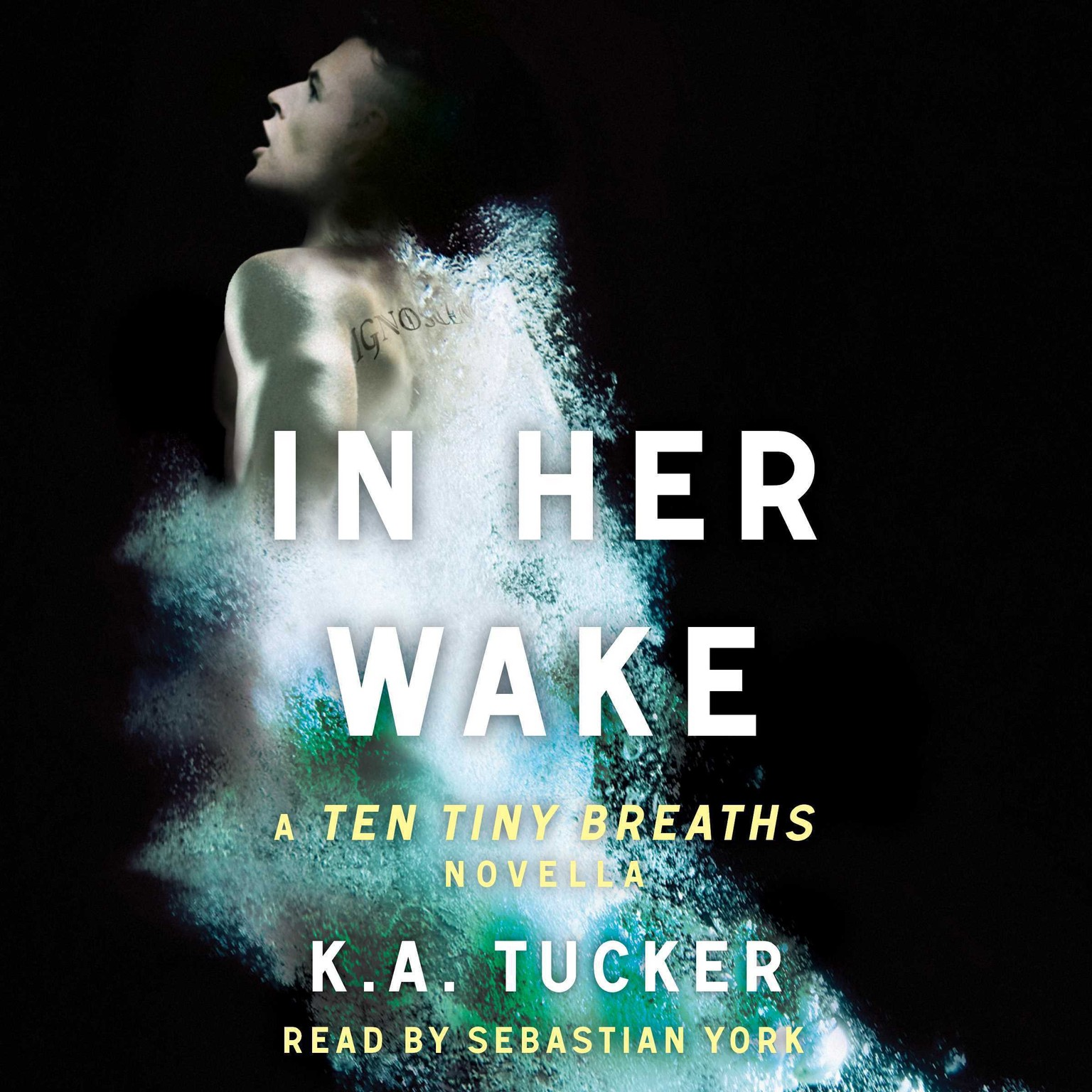 Printable In Her Wake: A Ten Tiny Breaths Novella Audiobook Cover Art
