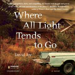 Where All Light Tends to Go Audiobook, by David Joy