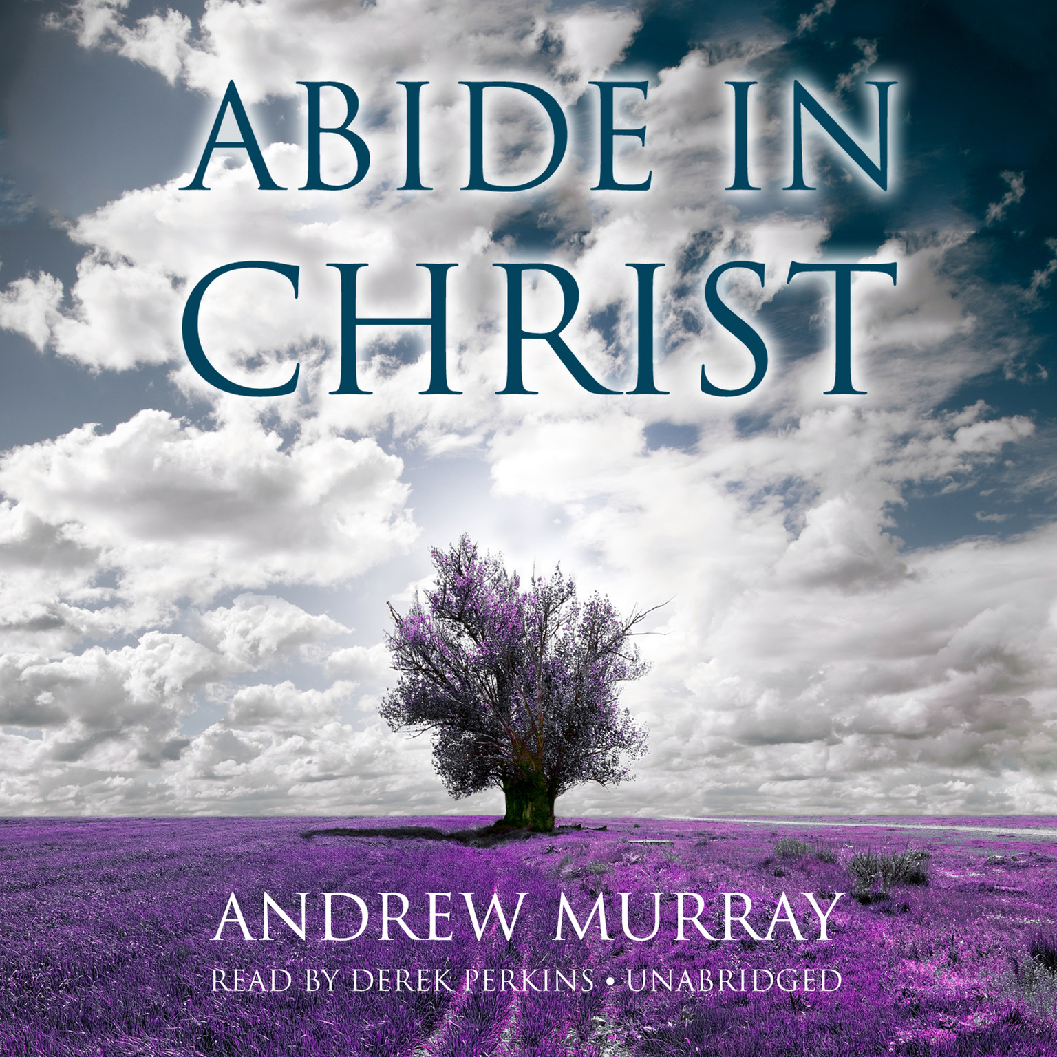 Printable Abide in Christ Audiobook Cover Art