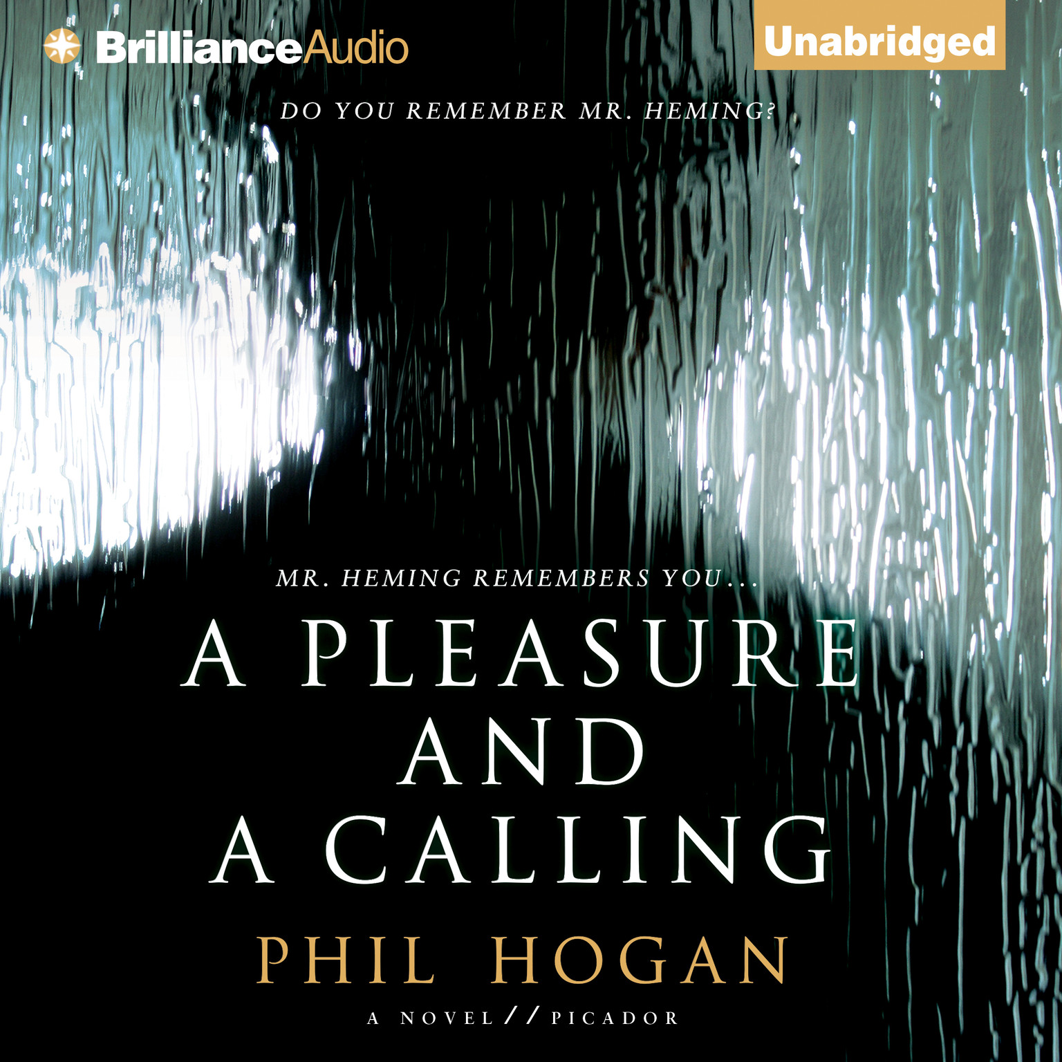 Printable A Pleasure and a Calling: A Novel Audiobook Cover Art