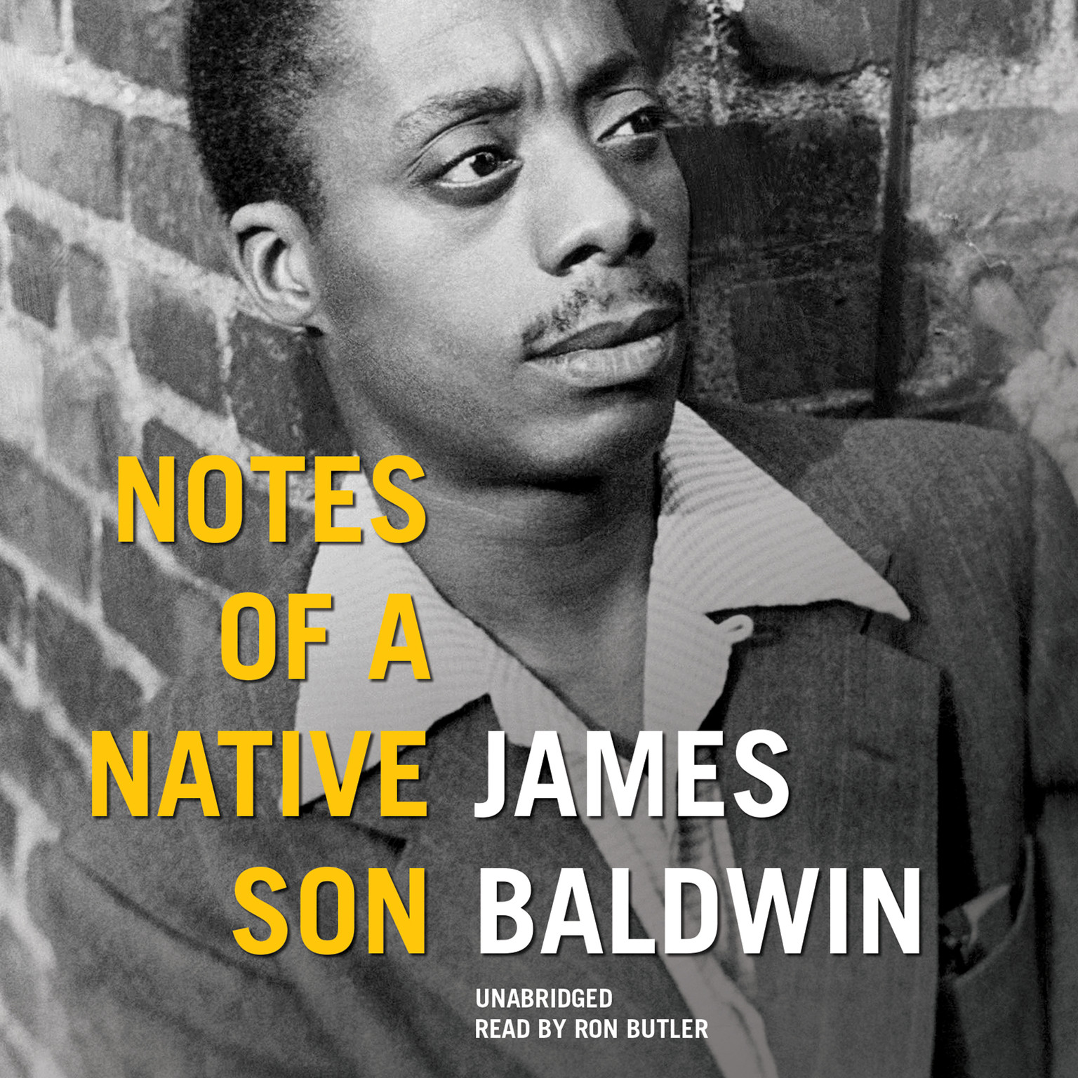Printable Notes of a Native Son Audiobook Cover Art