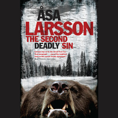 The Second Deadly Sin Audiobook, by Åsa Larsson