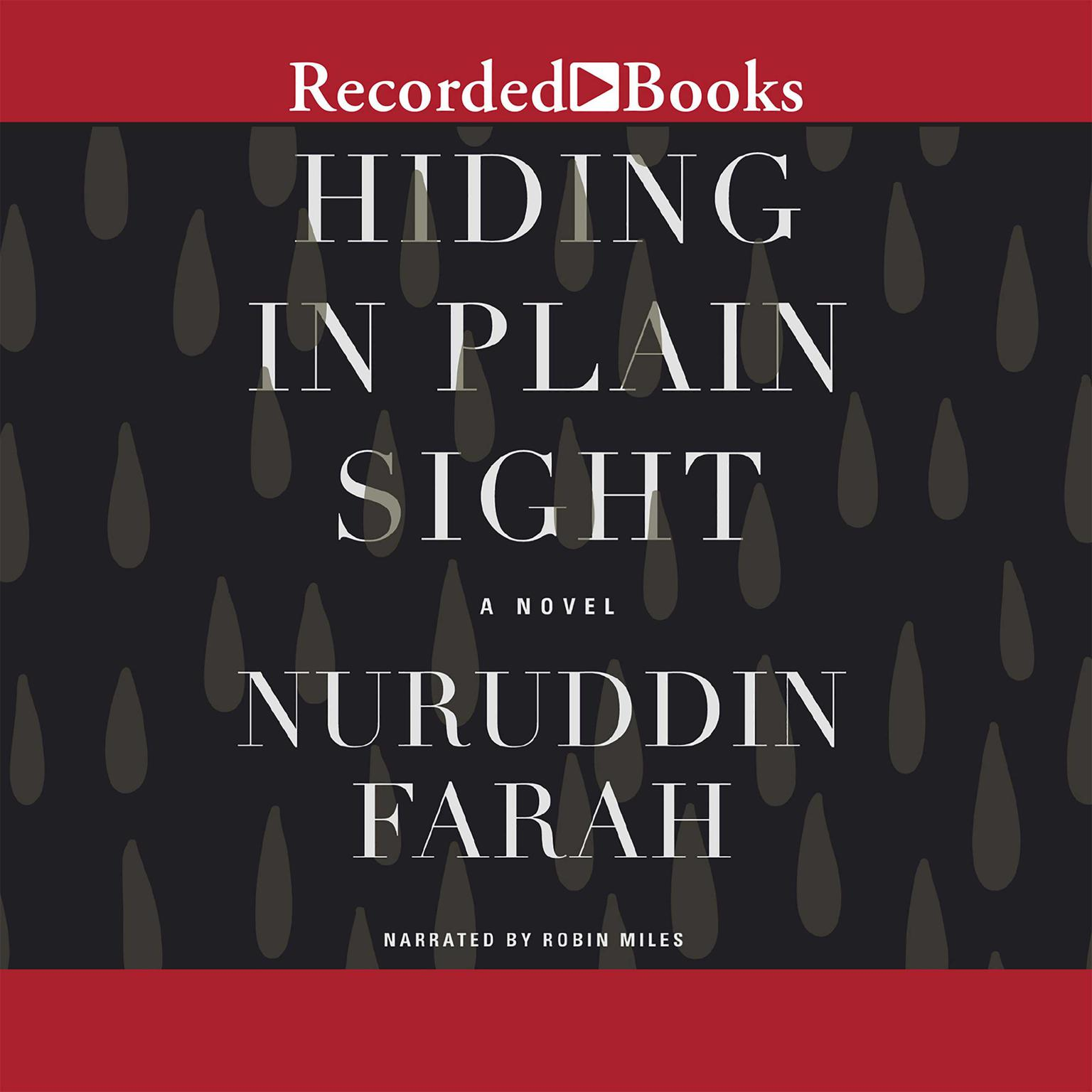 Printable Hiding in Plain Sight Audiobook Cover Art