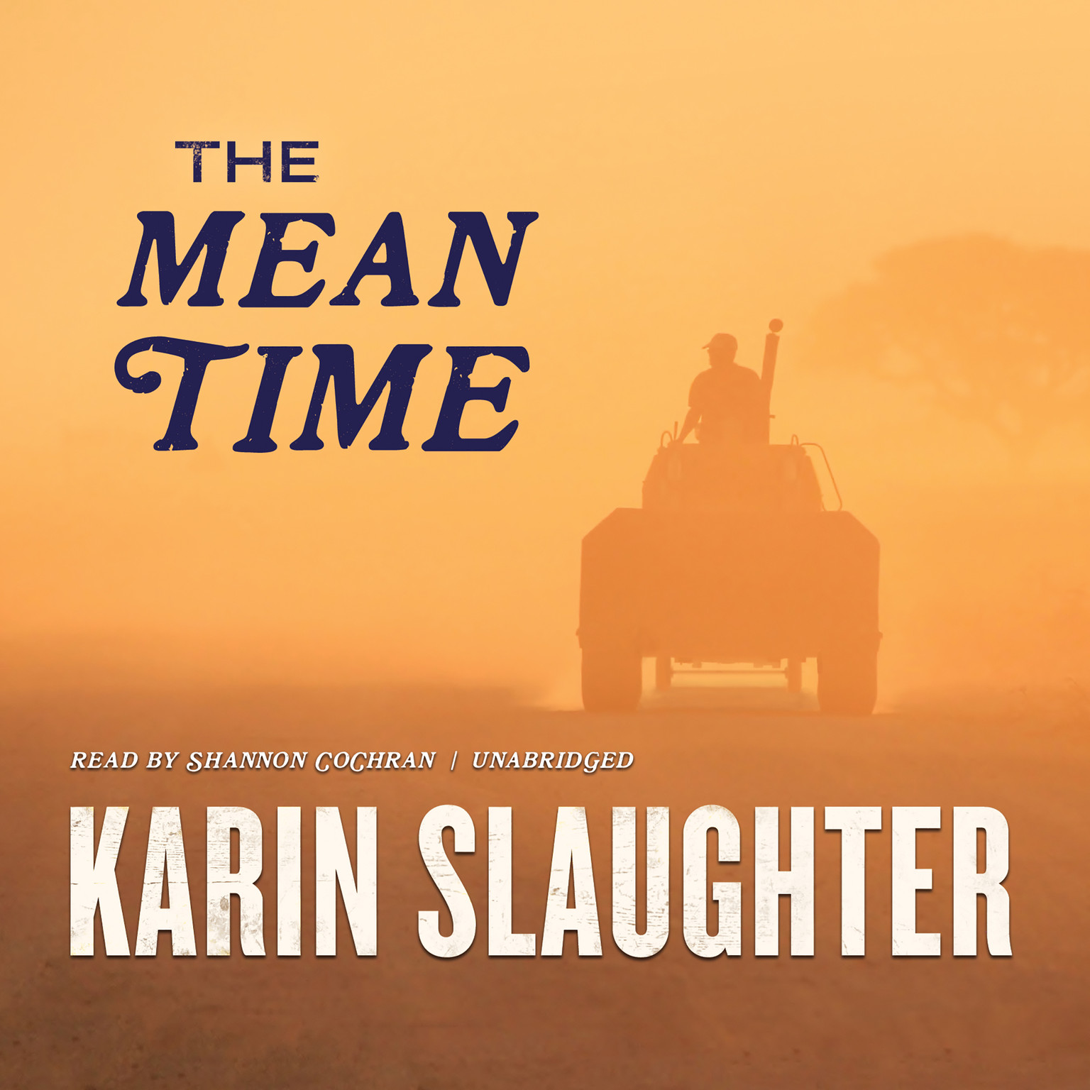 Printable The Mean Time Audiobook Cover Art