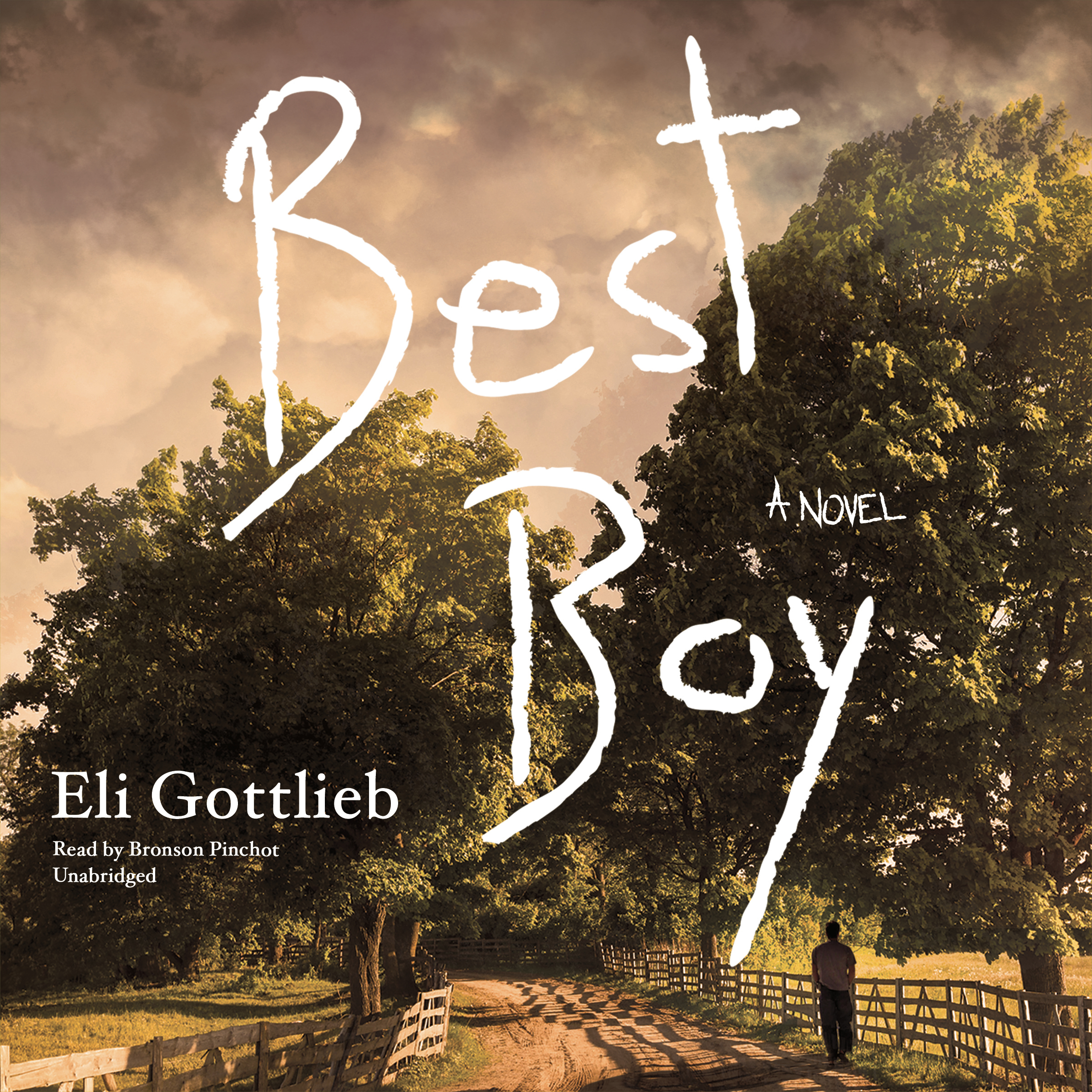 Printable Best Boy: A Novel Audiobook Cover Art