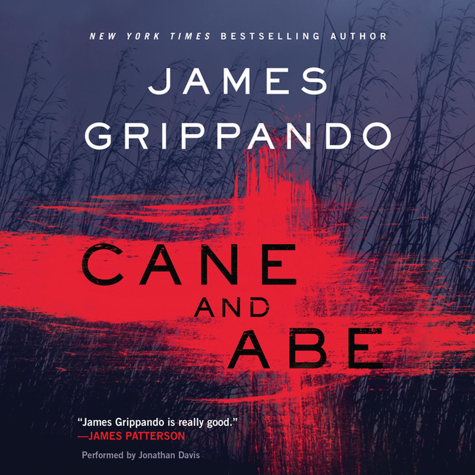Printable Cane and Abe Audiobook Cover Art