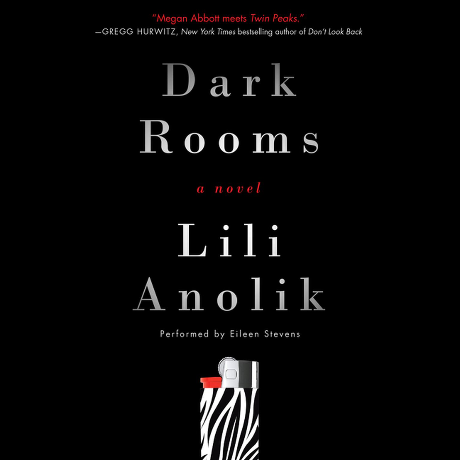 Printable Dark Rooms: A Novel Audiobook Cover Art