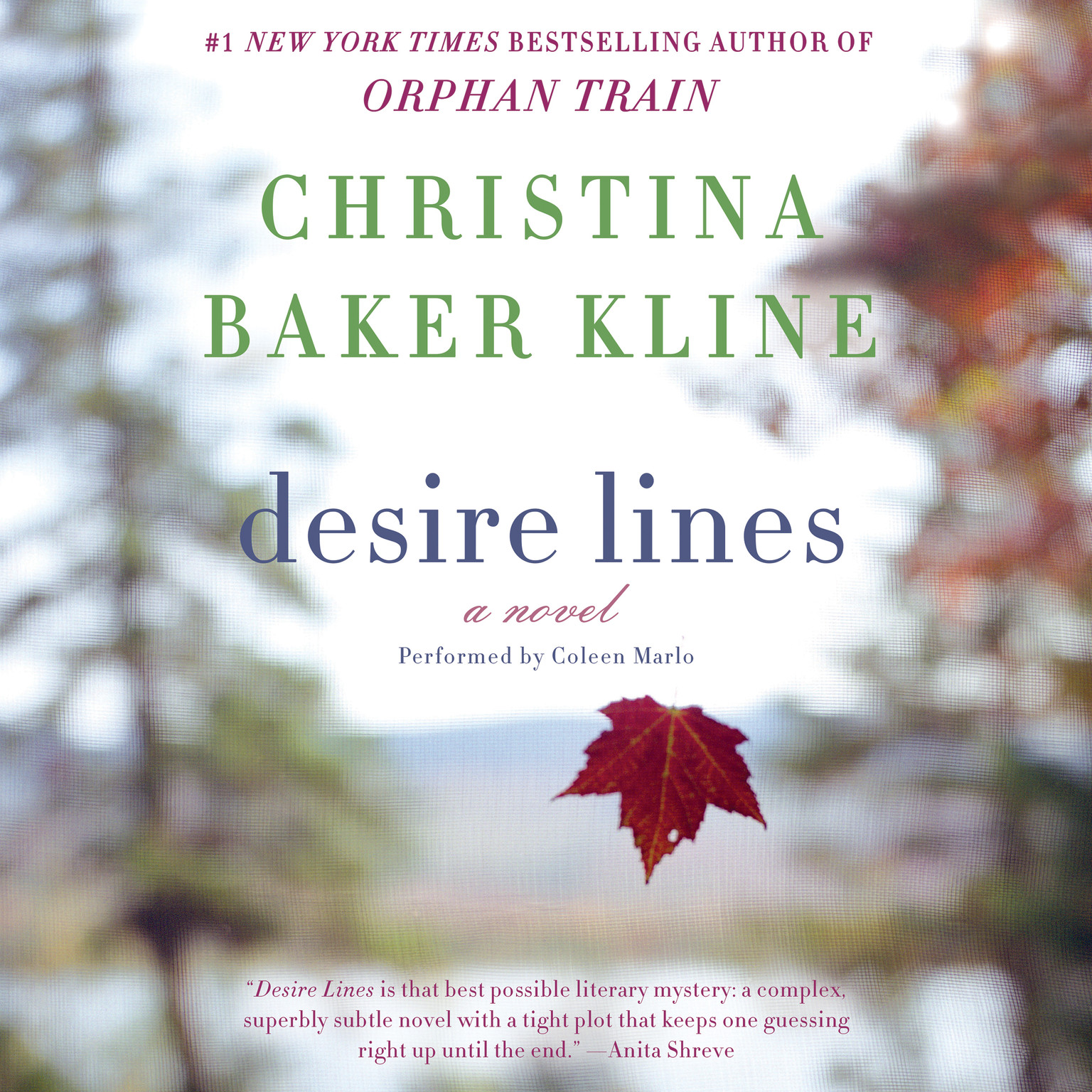 Printable Desire Lines: A   Novel Audiobook Cover Art
