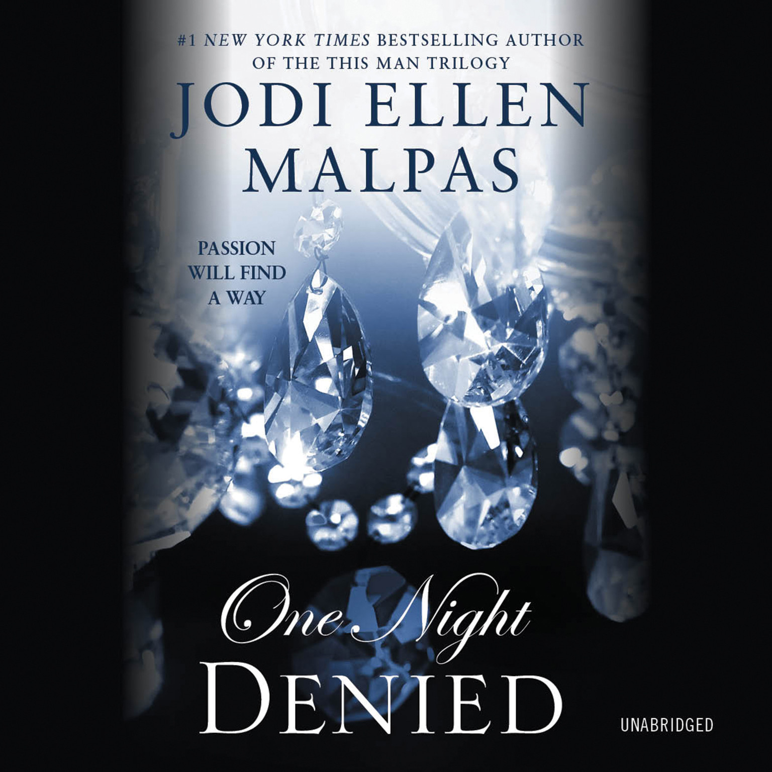 Printable One Night: Denied Audiobook Cover Art