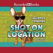Shot on Location Audiobook, by Laurence Shames