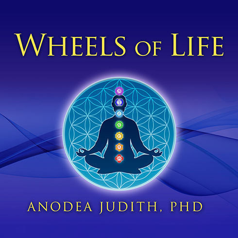 Printable Wheels of Life: A User's Guide to the Chakra System Audiobook Cover Art
