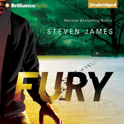 Fury Audiobook, by Steven James