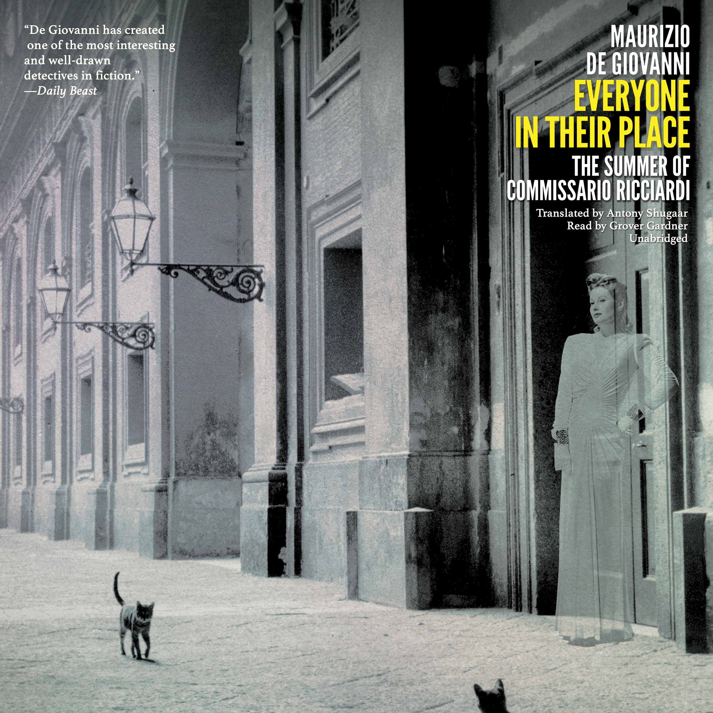 Printable Everyone in Their Place: The Summer of Commissario Ricciardi Audiobook Cover Art