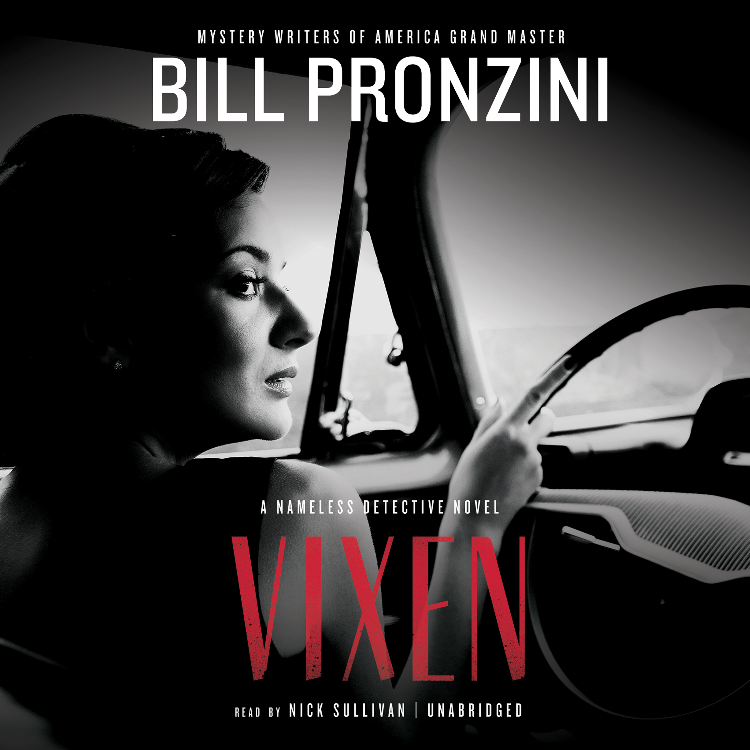 Printable Vixen: A Nameless Detective Novel Audiobook Cover Art