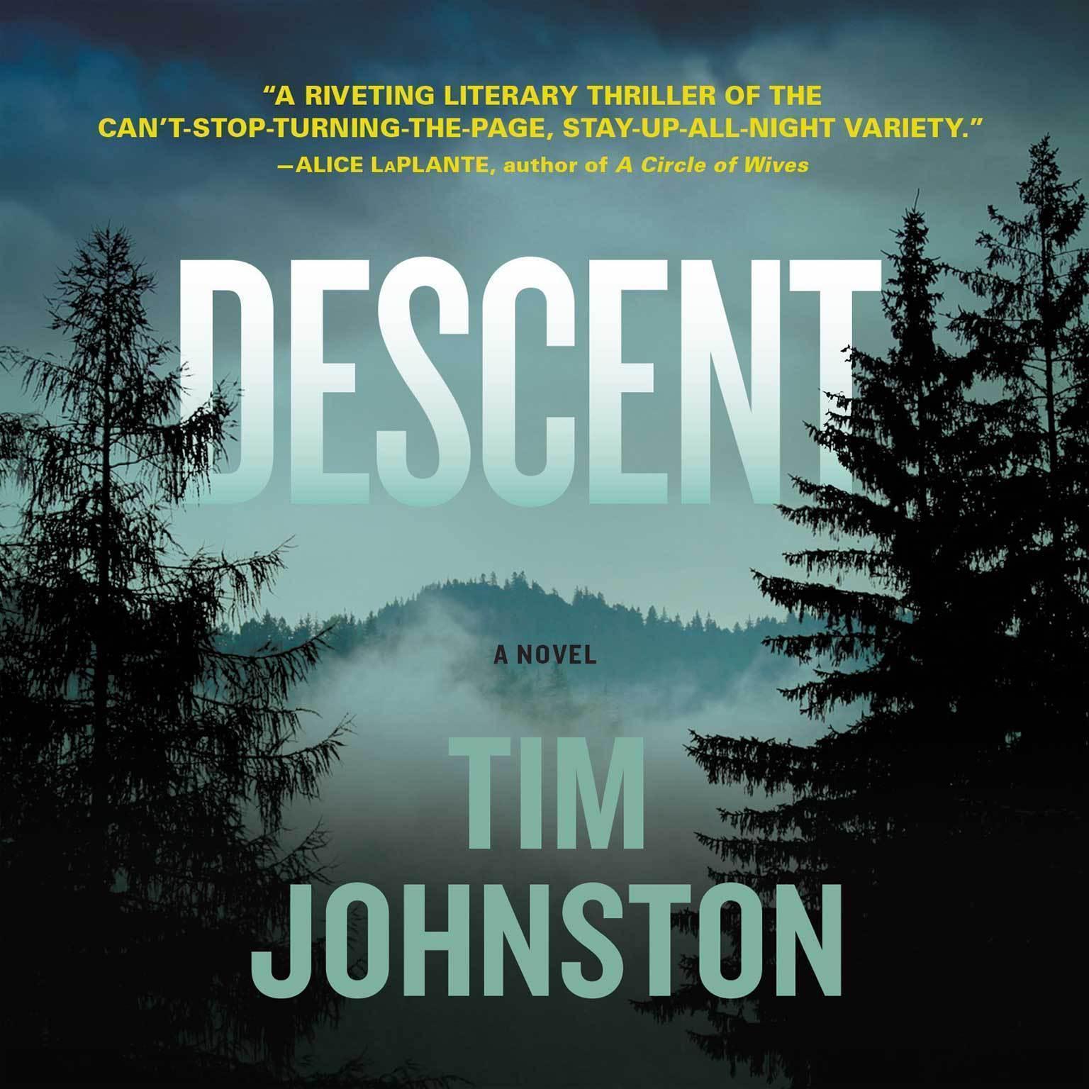 Printable Descent: A Novel Audiobook Cover Art