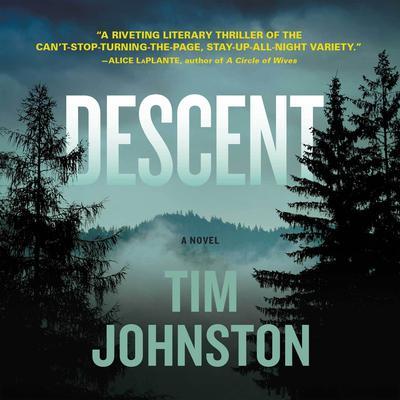 Descent: A Novel Audiobook, by Tim Johnston