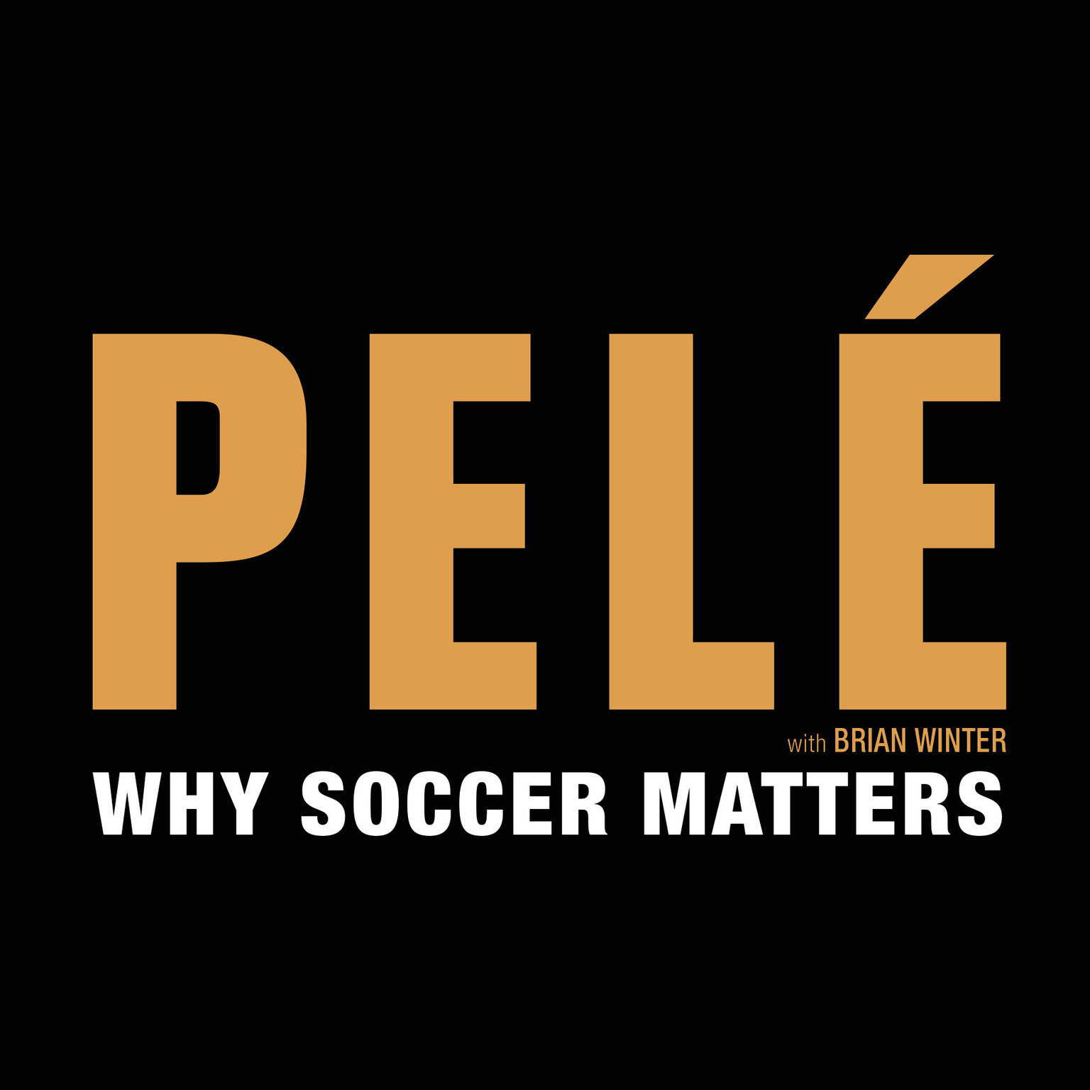 Printable Why Soccer Matters Audiobook Cover Art
