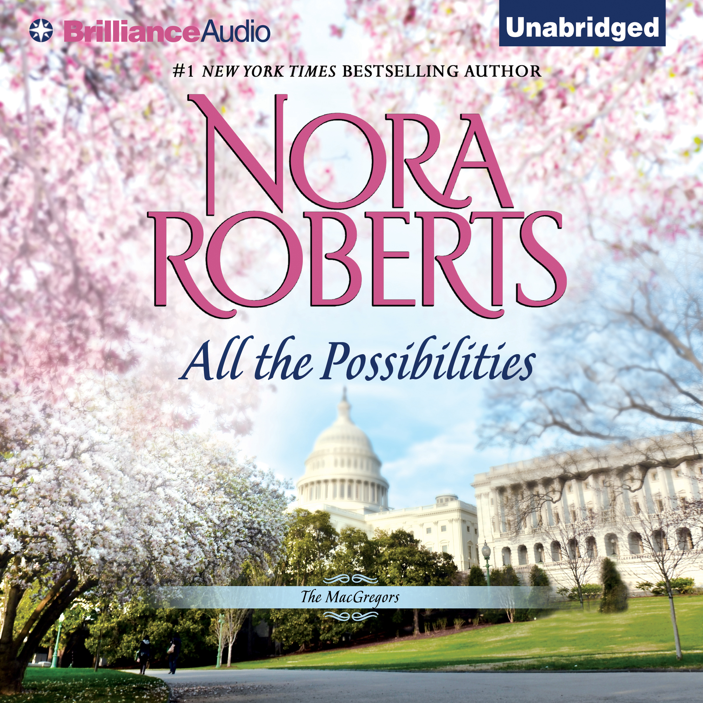 Printable All the Possibilities Audiobook Cover Art