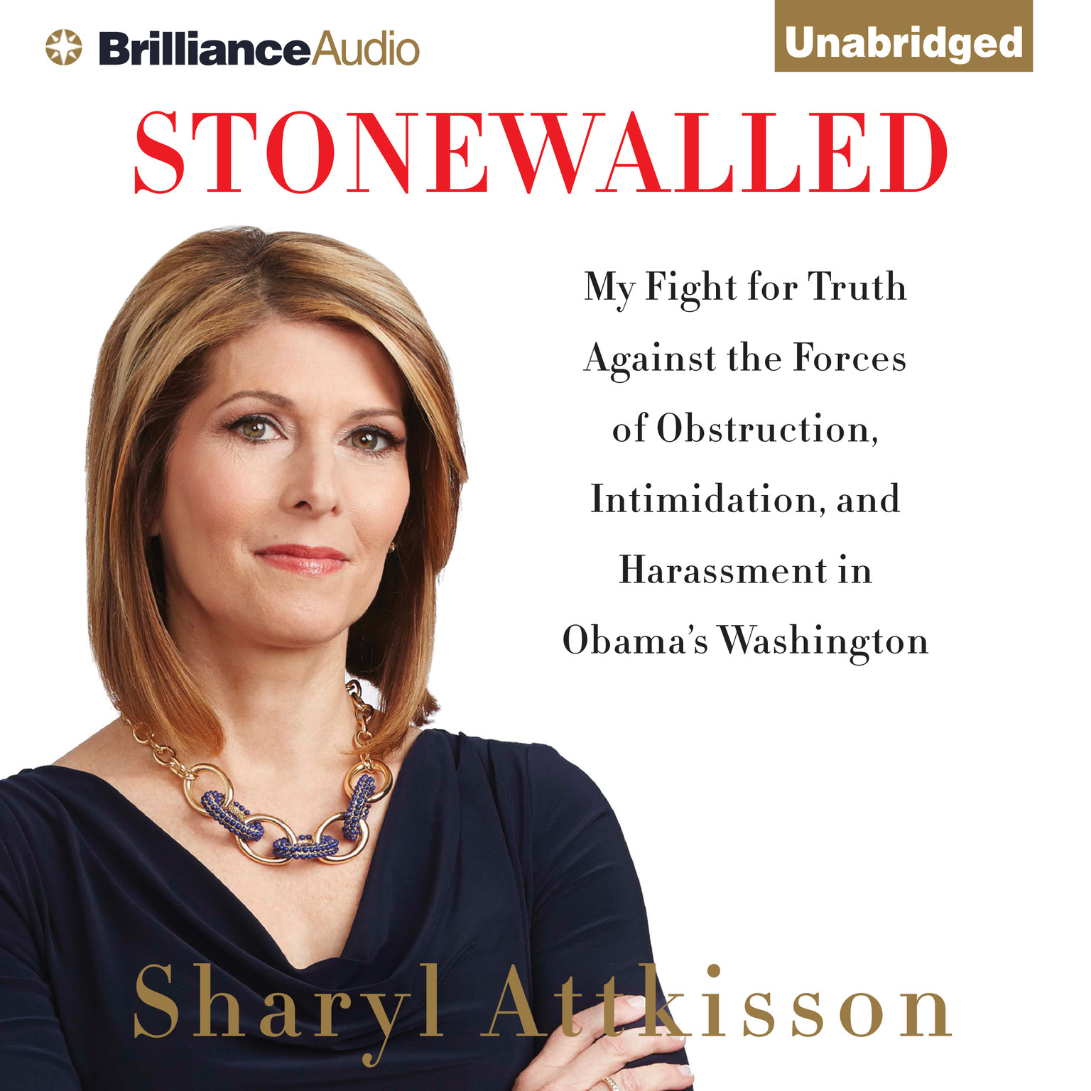 Printable Stonewalled: My Fight for Truth Against the Forces of Obstruction, Intimidation, and Harassment in Obama's Washington Audiobook Cover Art