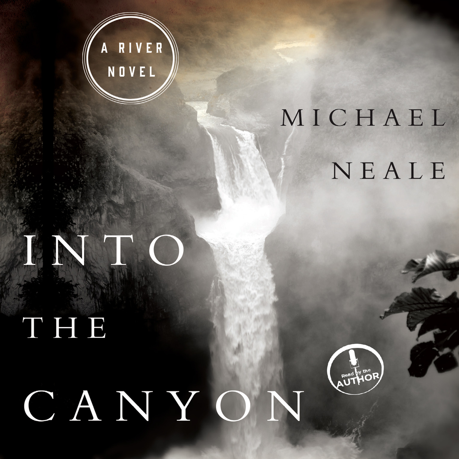 Printable Into the Canyon: A River Novel Audiobook Cover Art