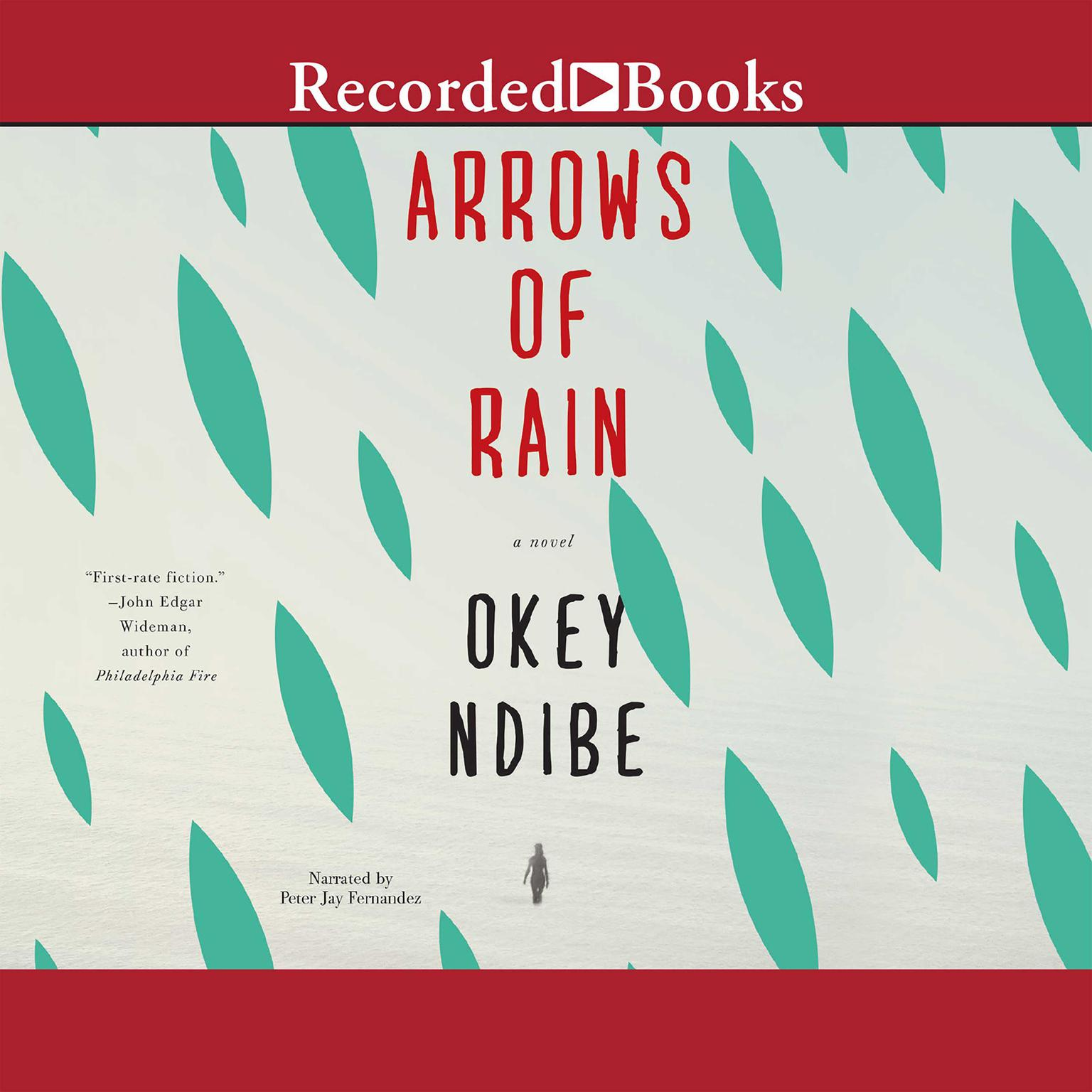 Printable Arrows of Rain: A Novel Audiobook Cover Art