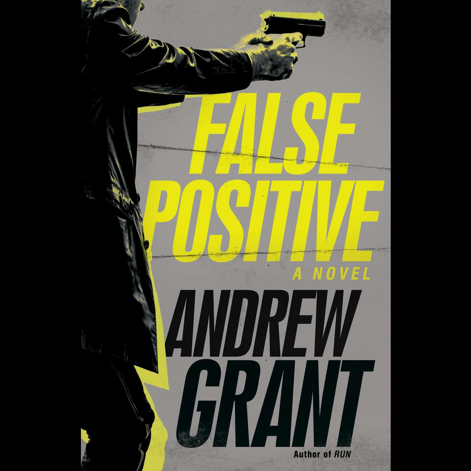 Printable False Positive: A Novel Audiobook Cover Art