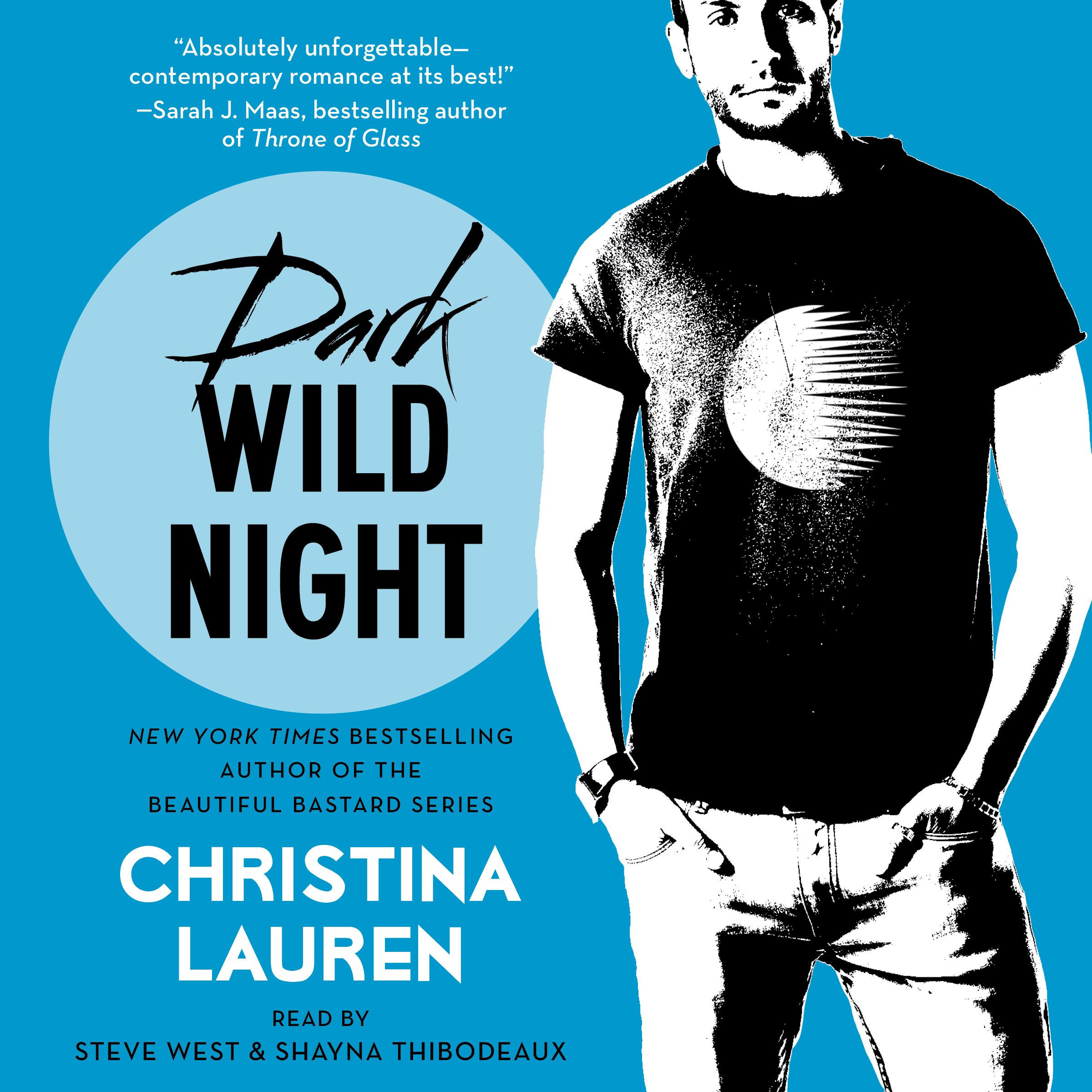 Printable Dark Wild Night Audiobook Cover Art