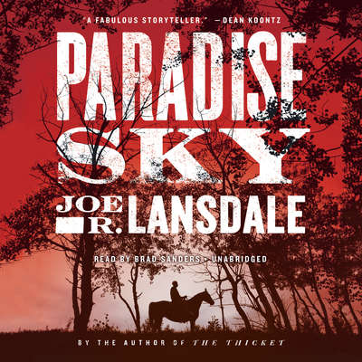 Paradise Sky Audiobook, by Joe R. Lansdale