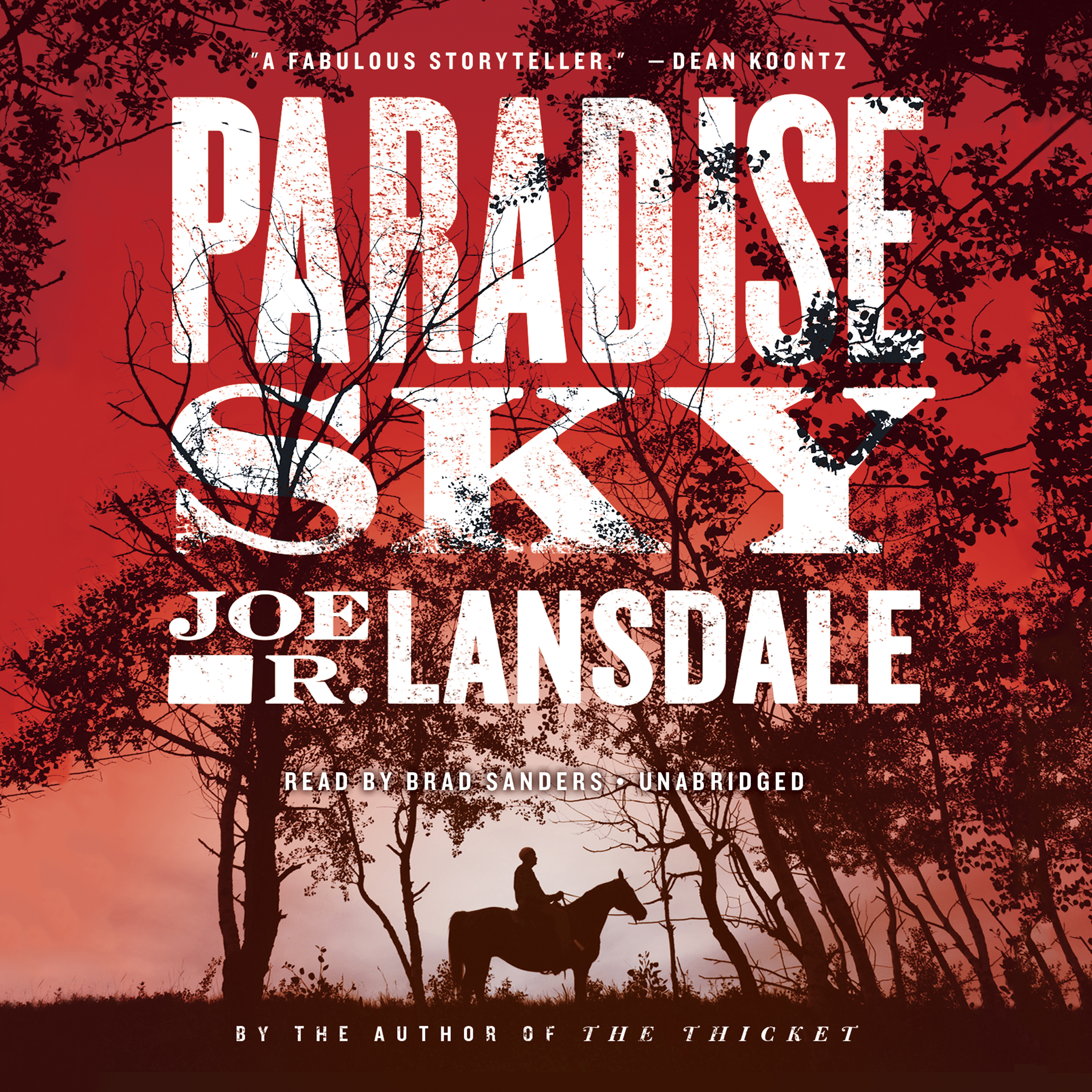 Printable Paradise Sky Audiobook Cover Art