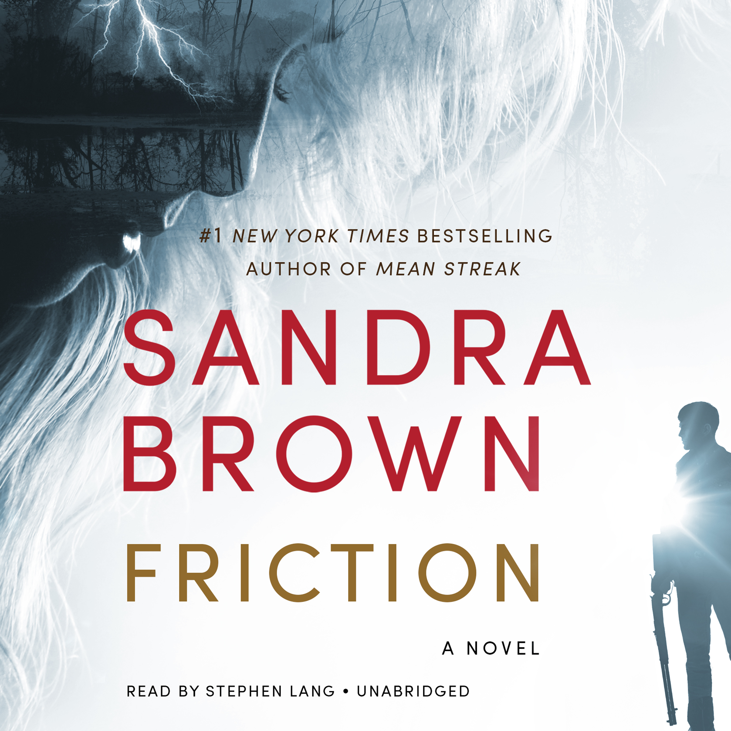 Printable Friction Audiobook Cover Art