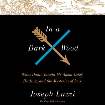 In A Dark Wood: What Dante Taught Me About Grief, Healing, and the Mysteries of Love Audiobook, by Joseph Luzzi