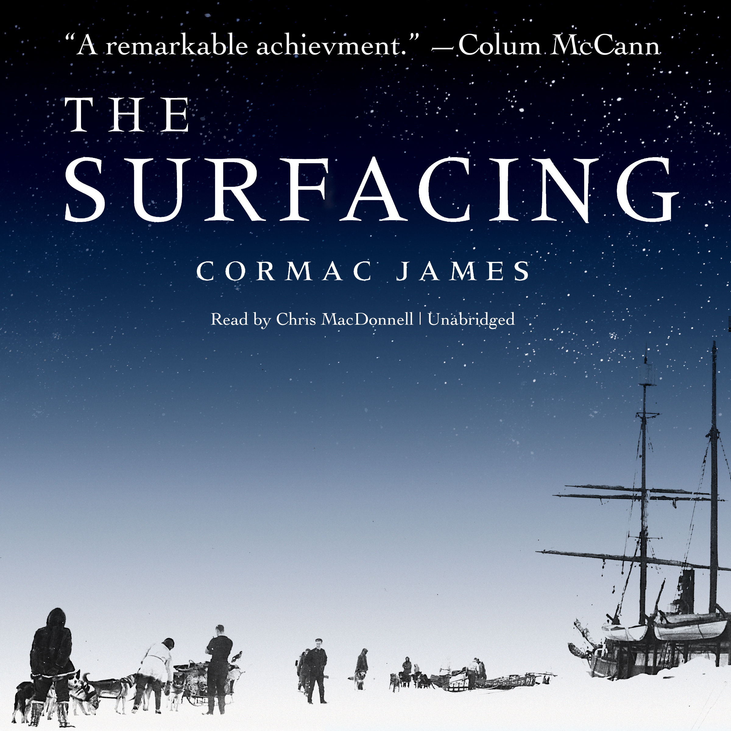 Printable The Surfacing Audiobook Cover Art