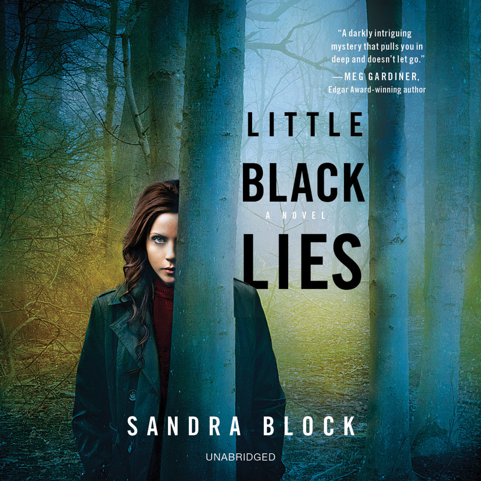Printable Little Black Lies Audiobook Cover Art