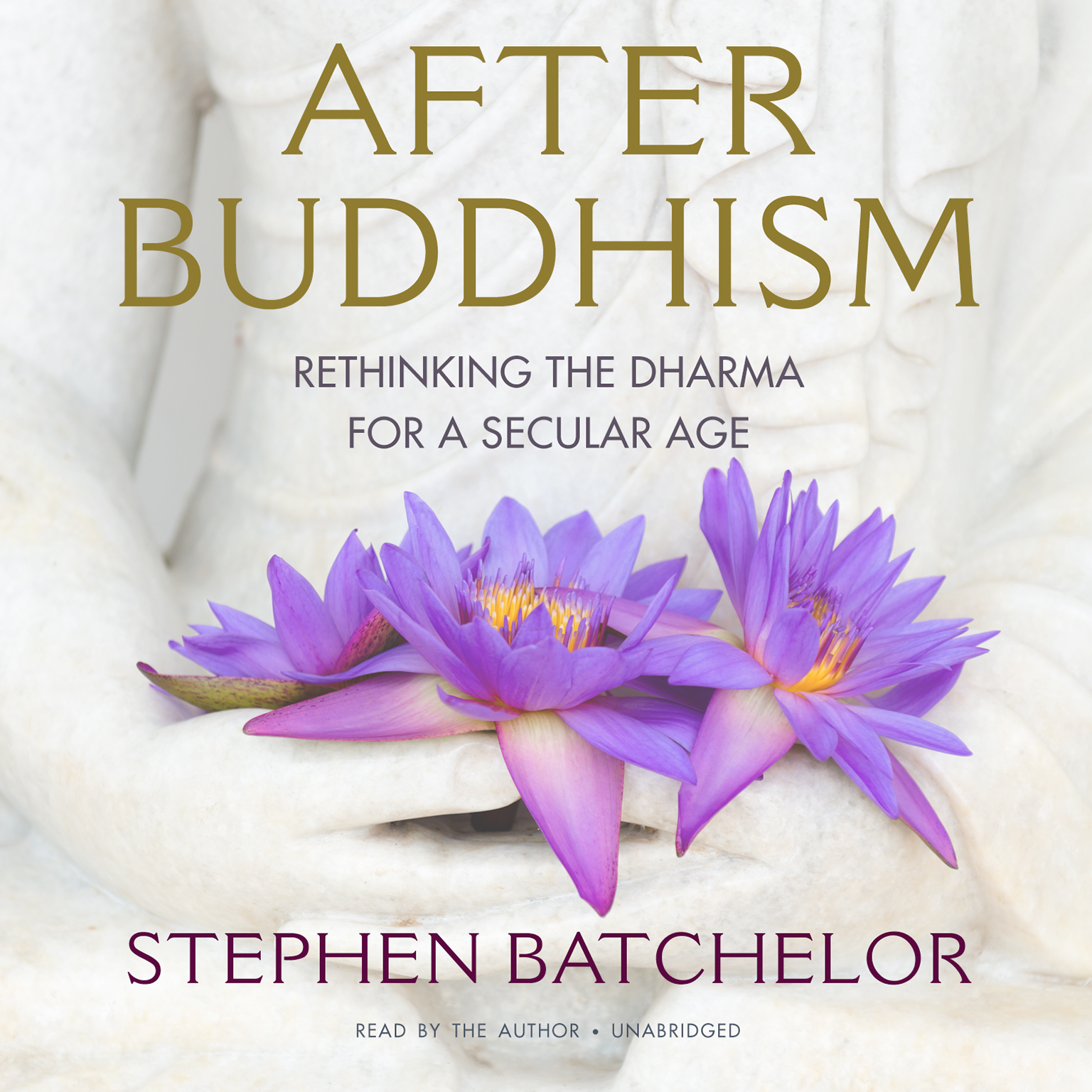 Printable After Buddhism: Rethinking the Dharma for a Secular Age Audiobook Cover Art
